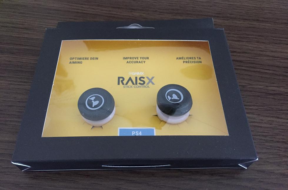 RAISXパッケージ