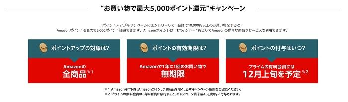 amazonブラックフライデー5000円還元キャンペーン
